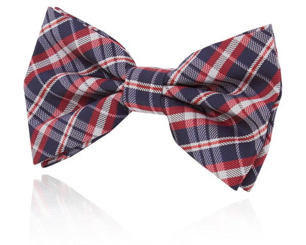 Navy Blue and Red Plaid Bow Tie