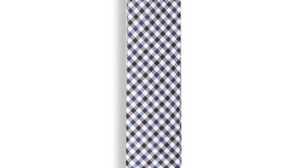 check tie blue ben sherman 2