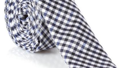 check tie blue ben sherman
